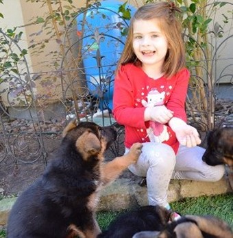 Puppies are Socialized w/Our Grandkids